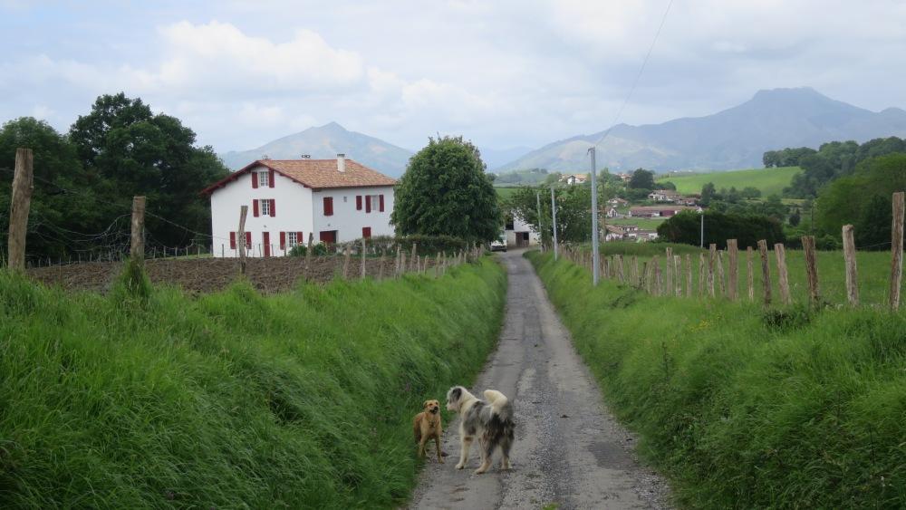 Camino de Santiago, segunda etapa -o: Mil y una formas de hacer penitencia- (5/6)