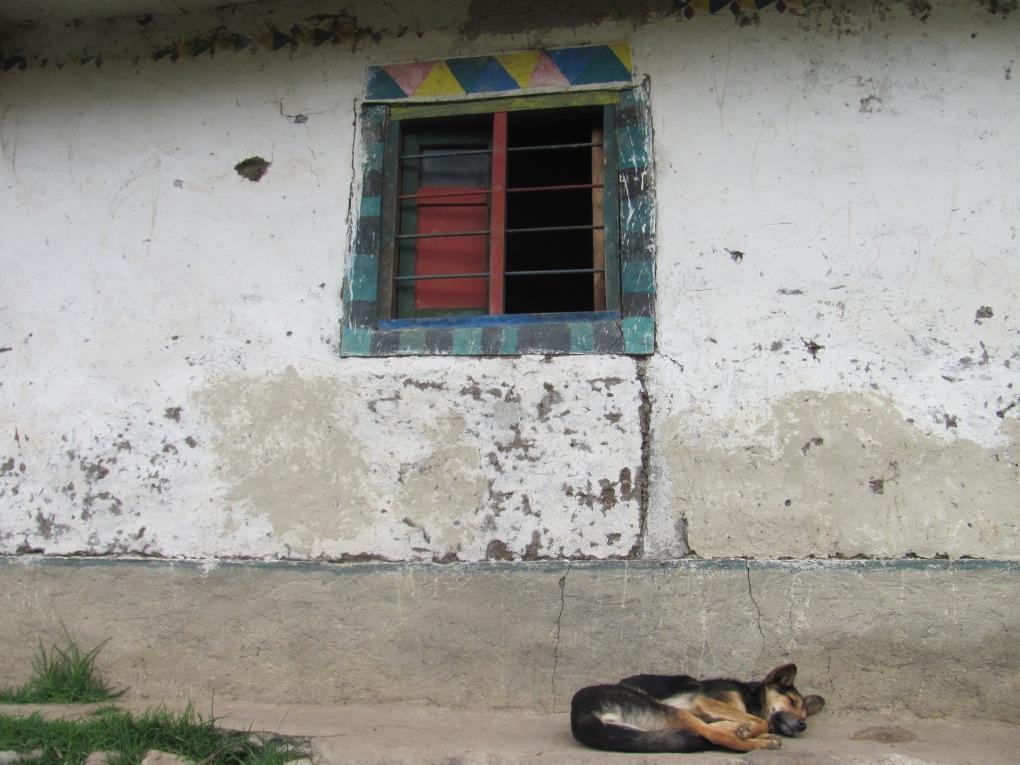 Silvia, Cauca, 2011