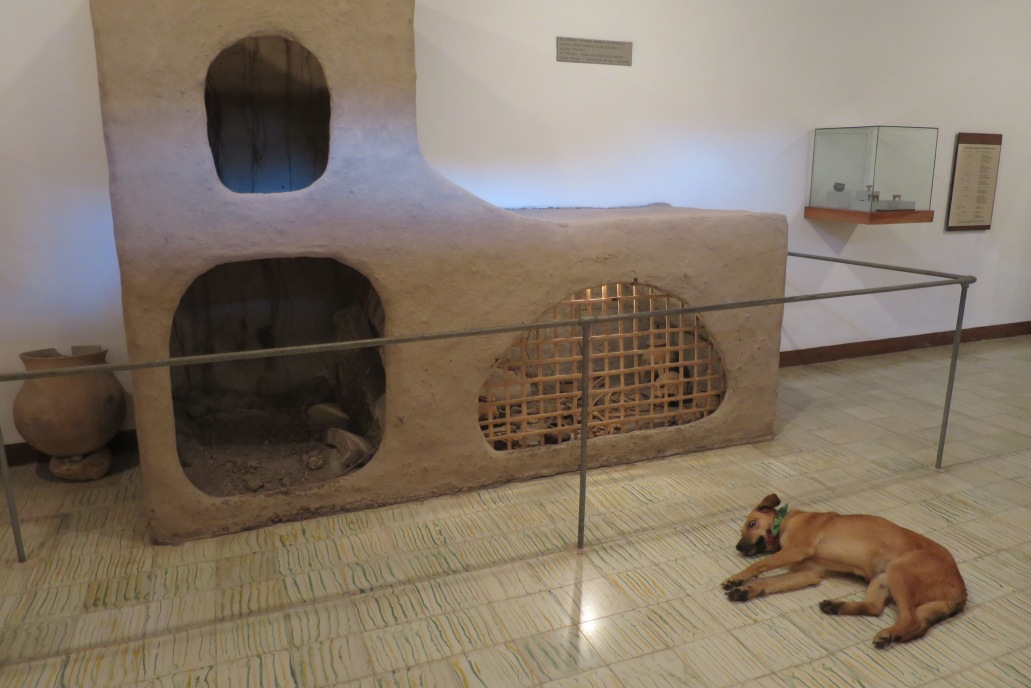 En el museo antropológico, tras evitar que entrara en la tumba a coger un hueso de momia